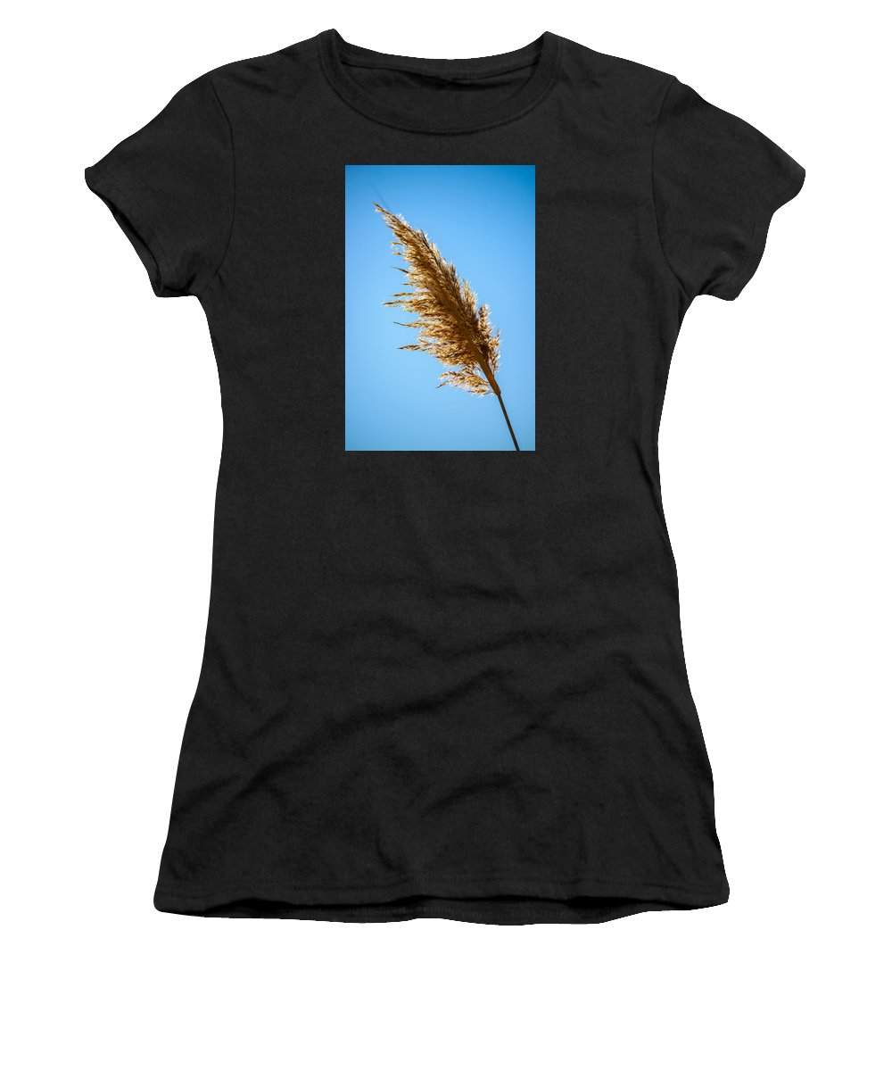 Winter Women's T-Shirt (Athletic Fit) featuring the photograph Winter Glow #5 by Mark Robert Rogers