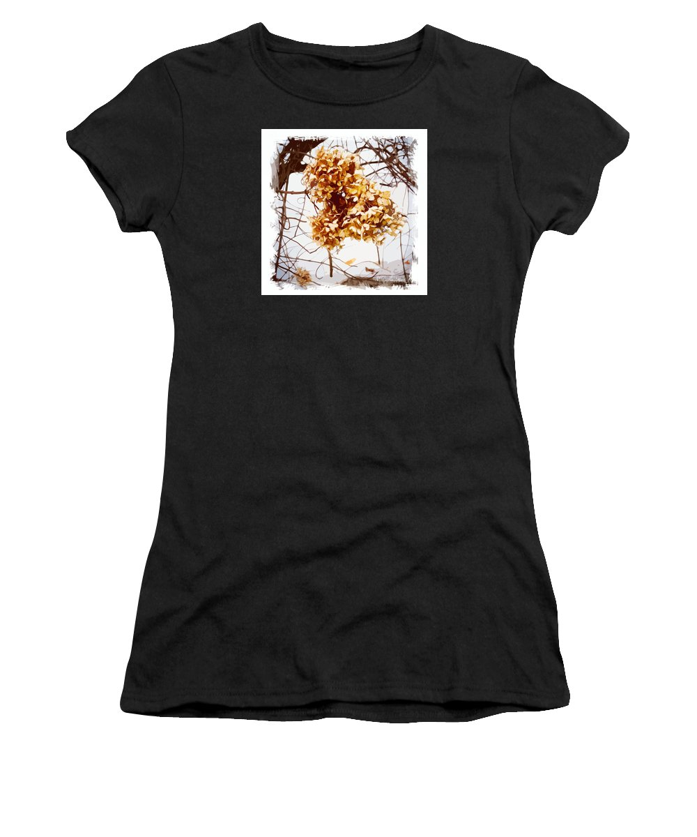 Hydrangea Women's T-Shirt (Athletic Fit) featuring the photograph Winter Hydrangea by Caitlin Lodato