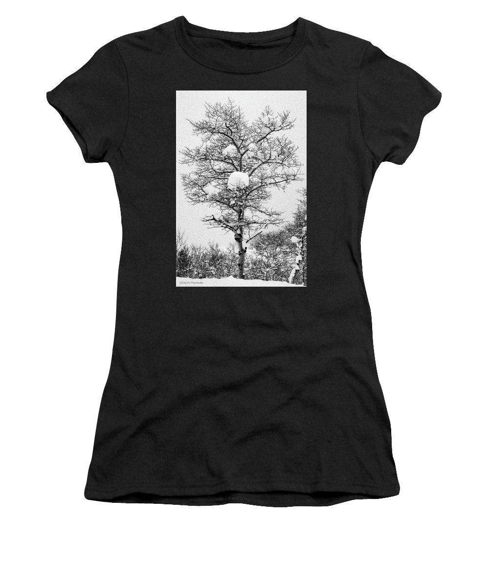 Winter Women's T-Shirt featuring the photograph Winter Solace by Ward Thurman