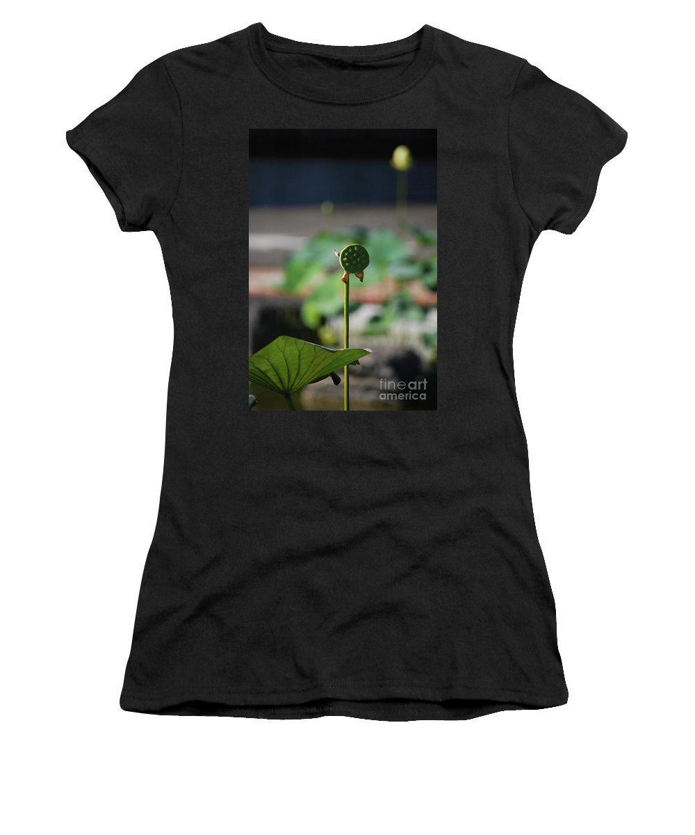 Women's T-Shirt featuring the photograph Without Protection Number Two by Heather Kirk