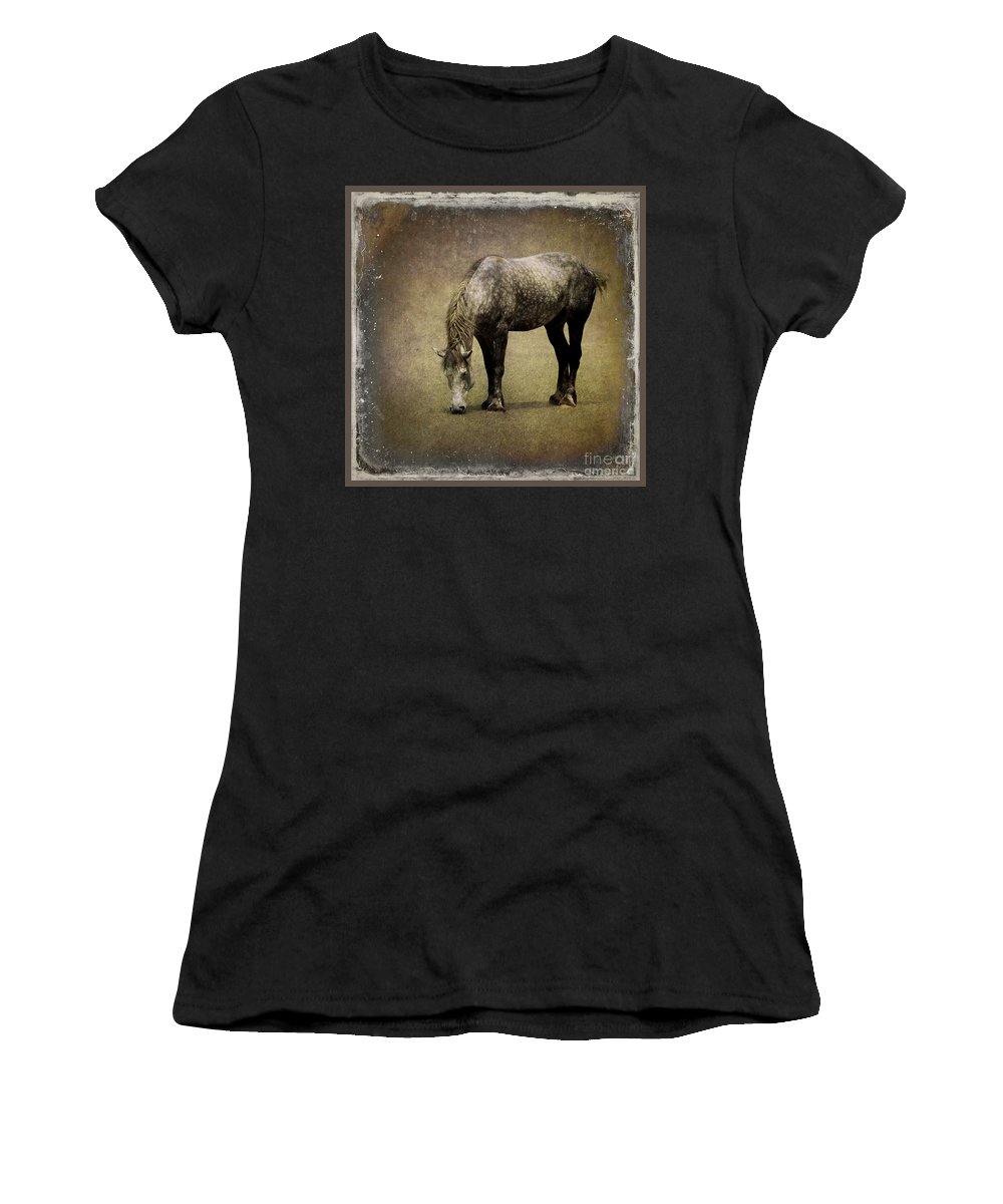 Horse Women's T-Shirt featuring the photograph Working Horse by Sari Sauls