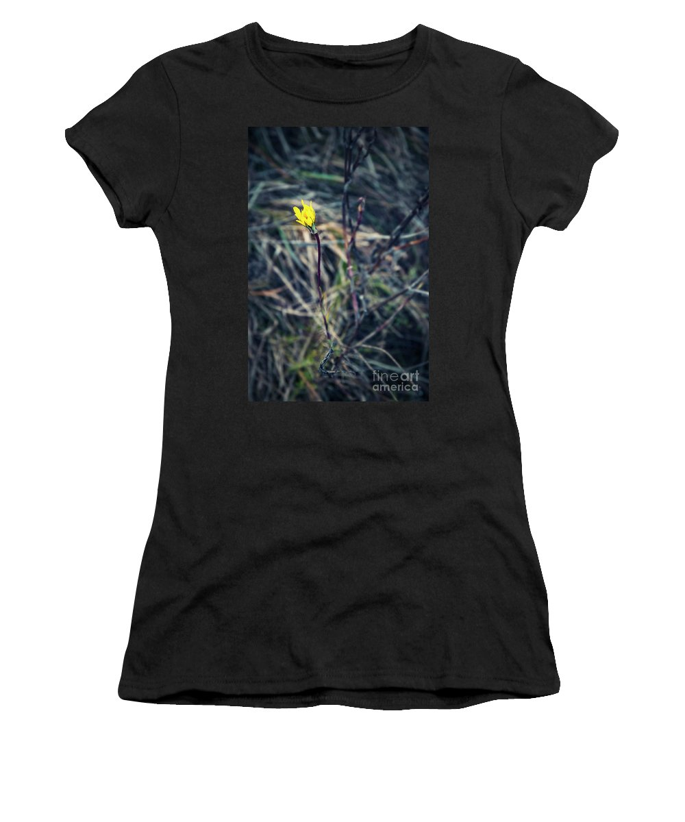 Decoration Women's T-Shirt (Athletic Fit) featuring the photograph Yellow Flower In Dry Autumn Grass by Jozef Jankola