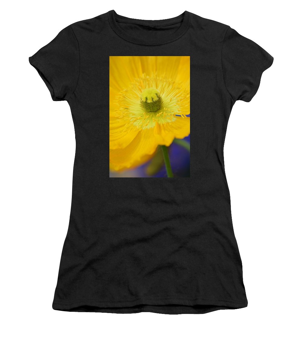 Yellow On Purple Women's T-Shirt (Athletic Fit) featuring the photograph Yellow On Purple by Warren Thompson