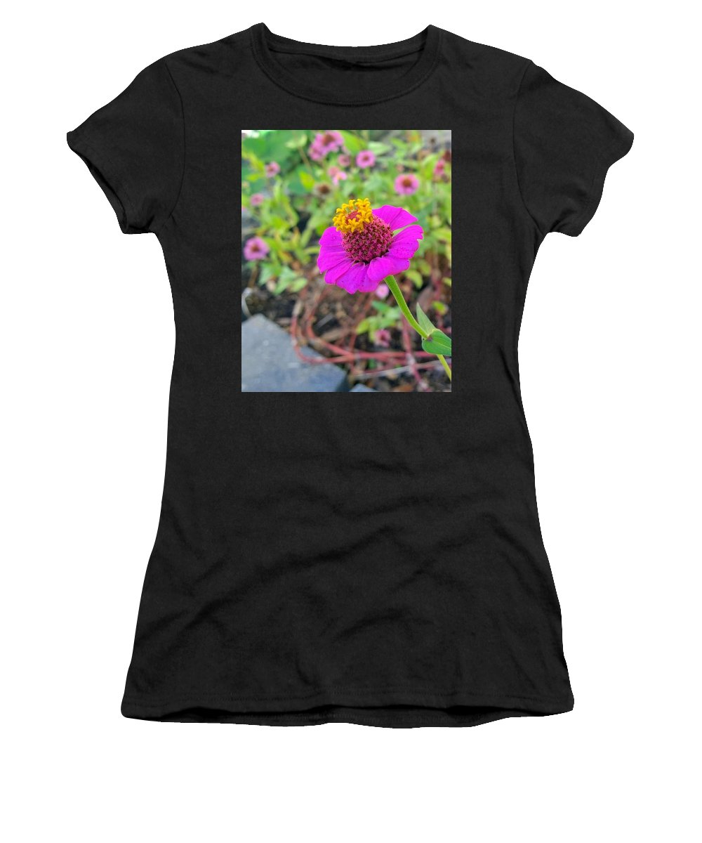 Zinnia Women's T-Shirt (Athletic Fit) featuring the photograph Zinnia by Gayle Miller