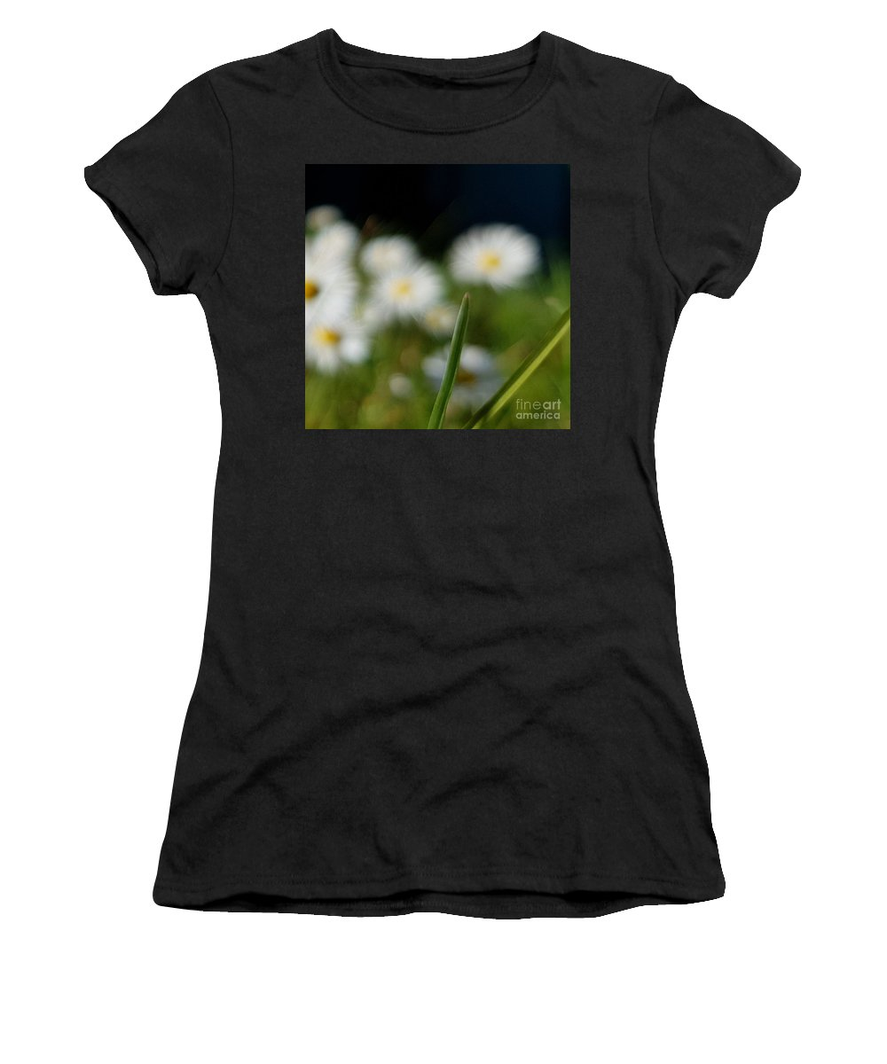 Women's T-Shirt featuring the photograph Daisy Landscape by Paola Baroni