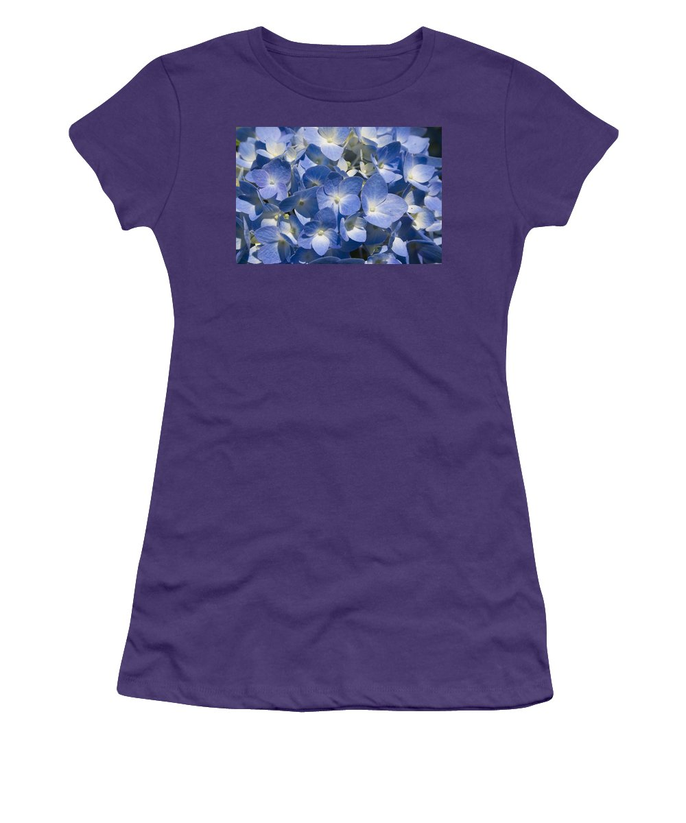 Flower Bloom Blue White Close Nature Sunny Summer Hydrangea Women's T-Shirt (Athletic Fit) featuring the photograph Hydrangea by Andrei Shliakhau