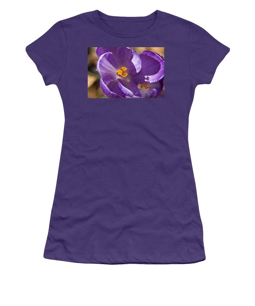 Crocus Women's T-Shirt (Athletic Fit) featuring the photograph Purple Spring Crocus by Teresa Mucha
