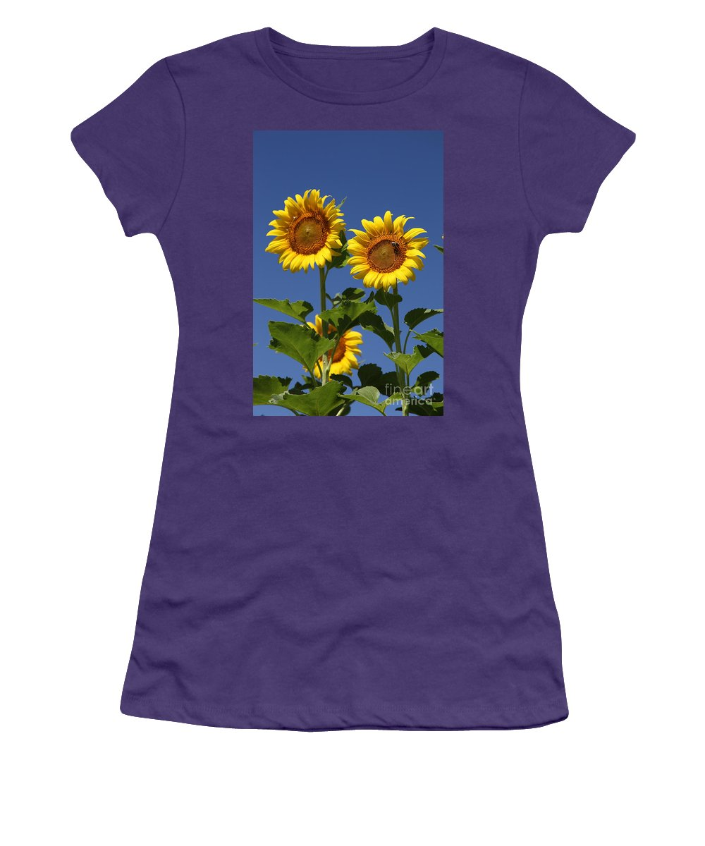 Sunflower Women's T-Shirt (Athletic Fit) featuring the photograph Viewing The Past by Amanda Barcon