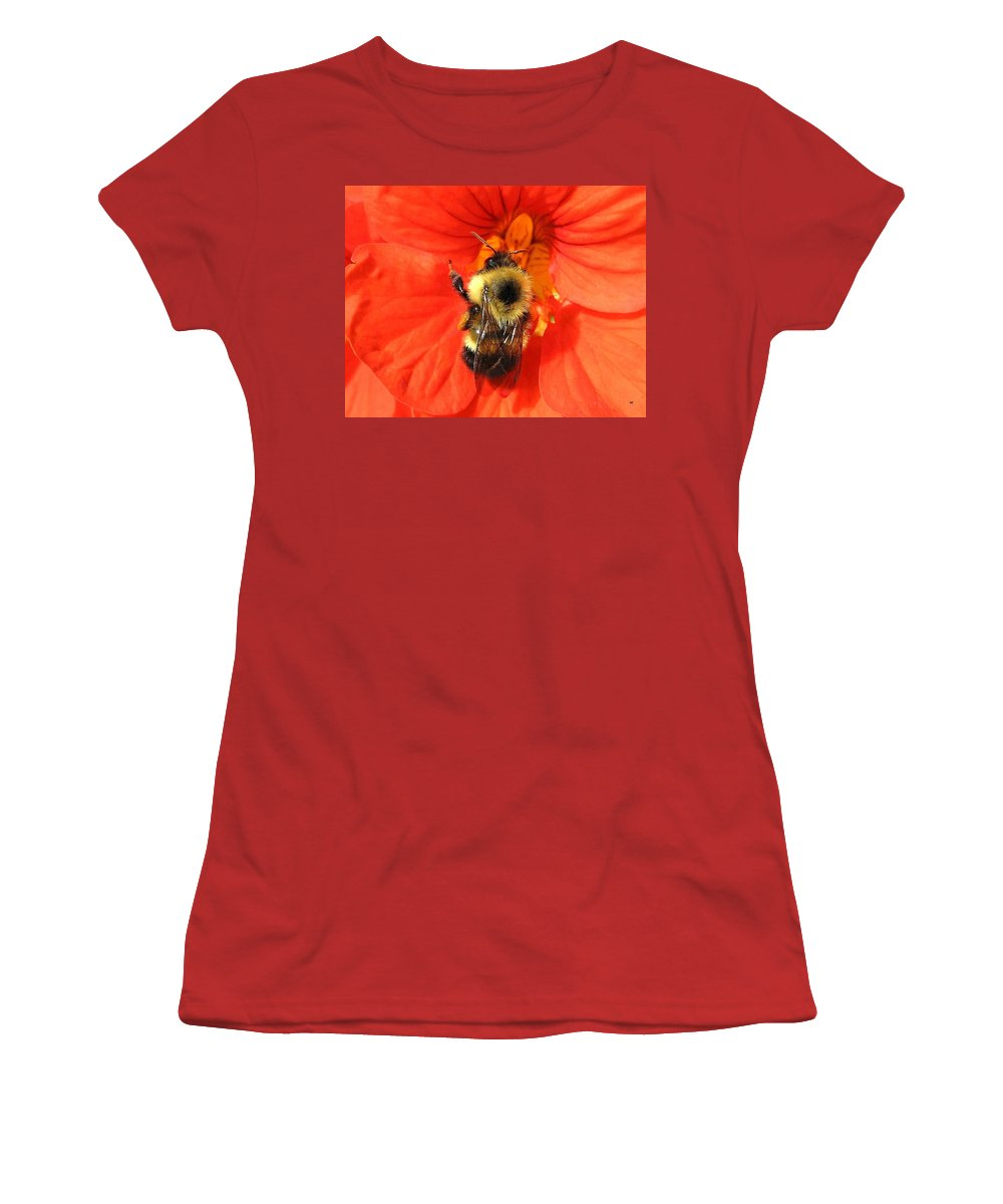 Bee Women's T-Shirt (Athletic Fit) featuring the photograph Bee And Nasturtium by Will Borden