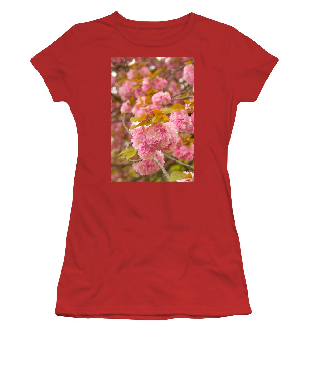 Cherry Women's T-Shirt (Athletic Fit) featuring the photograph Cherry Blossom by Sebastian Musial