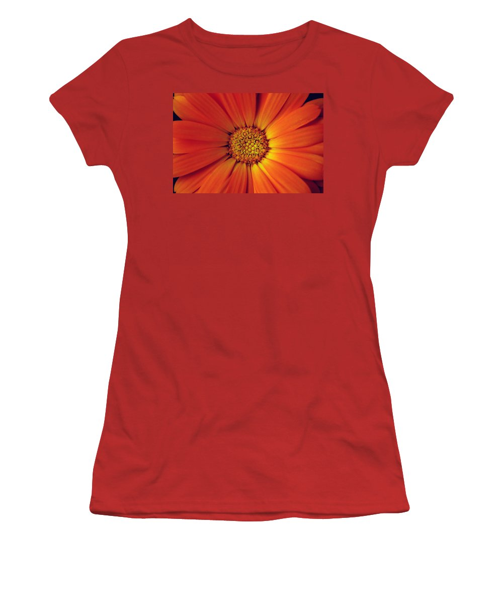 Plant Women's T-Shirt (Athletic Fit) featuring the photograph Close Up Of An Orange Daisy by Ralph A Ledergerber-Photography