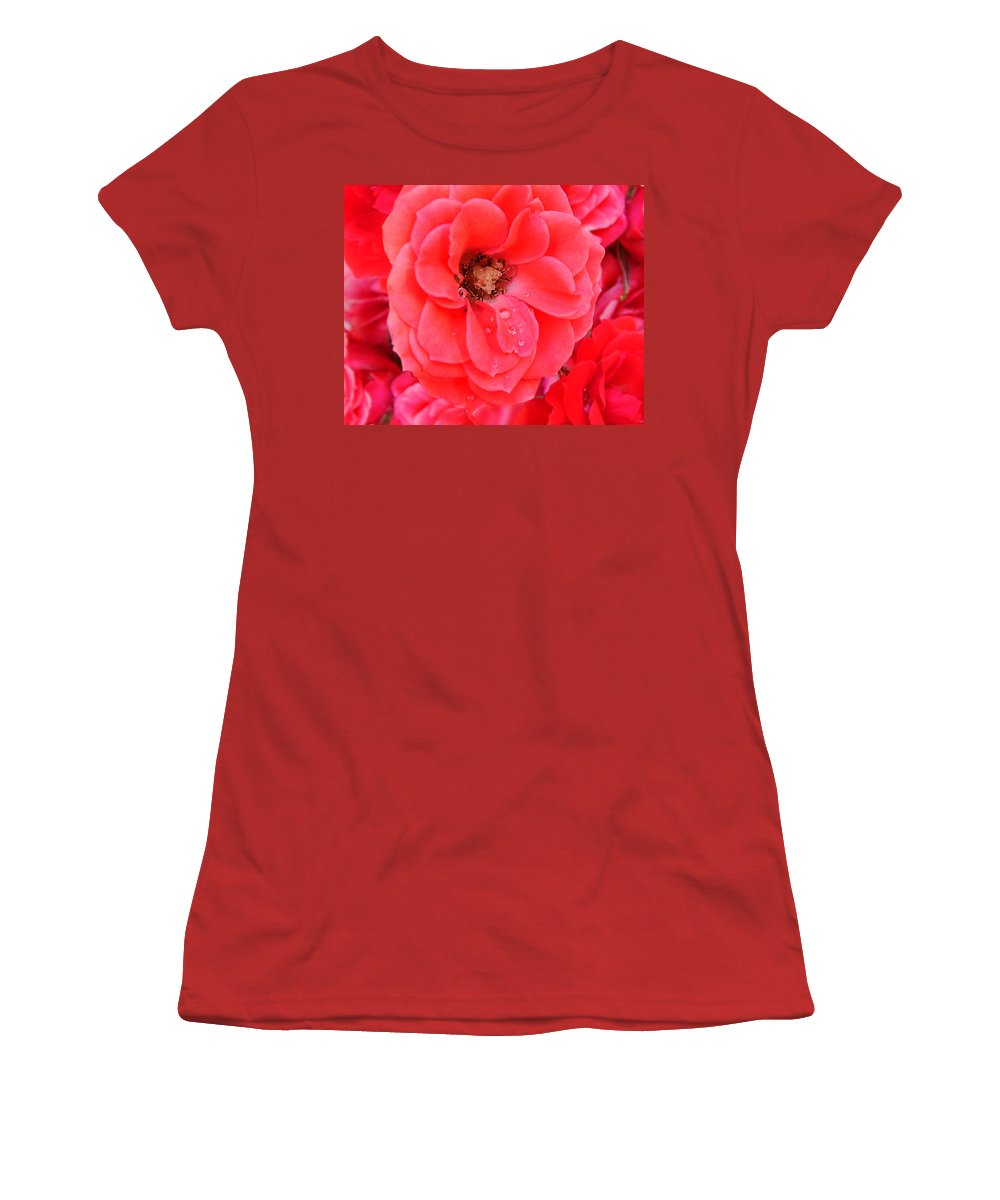 Roses Women's T-Shirt (Athletic Fit) featuring the photograph Full Bloom by Anthony Jones