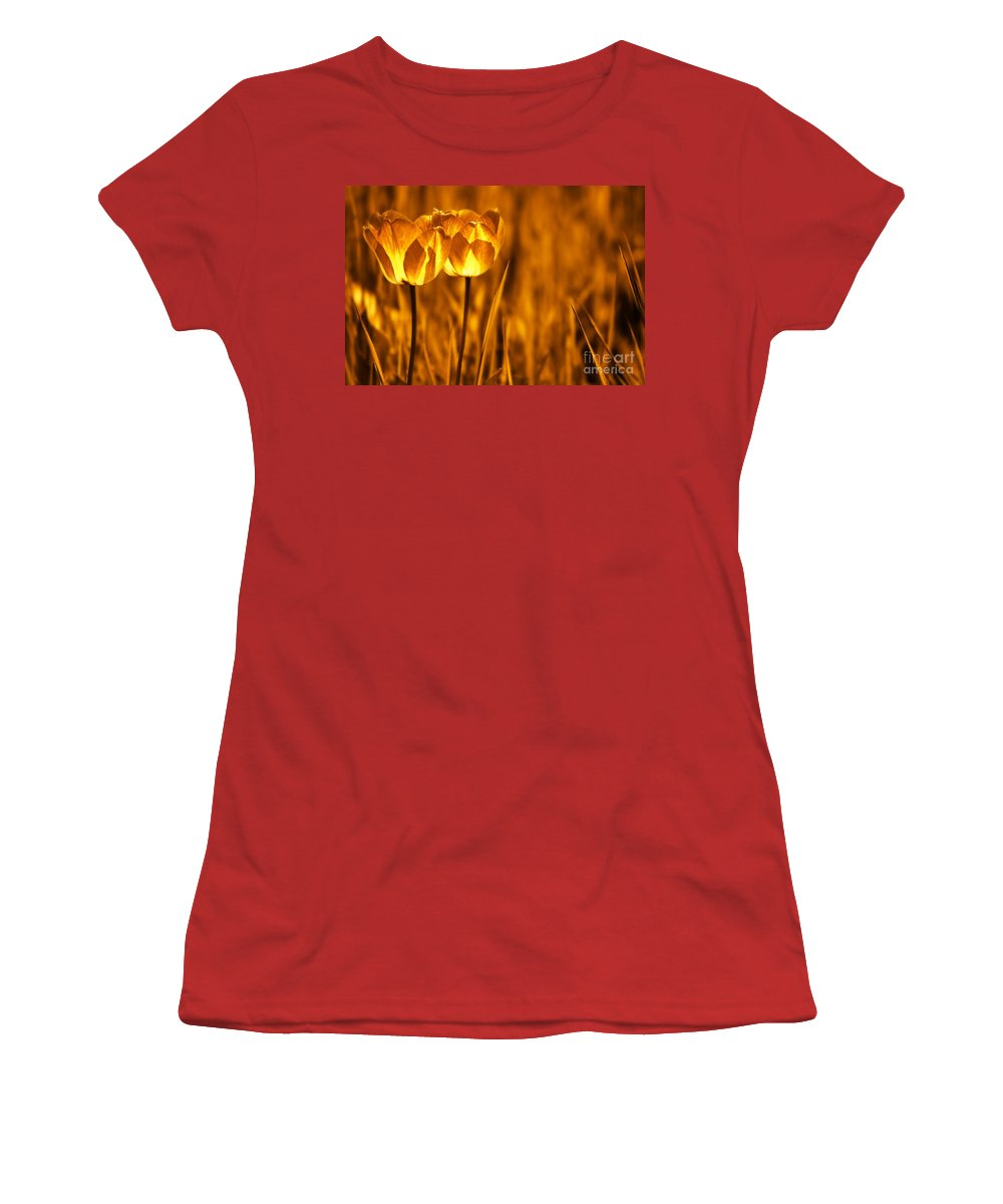 Tulips Women's T-Shirt (Athletic Fit) featuring the photograph In A Perfect World by Jacky Gerritsen
