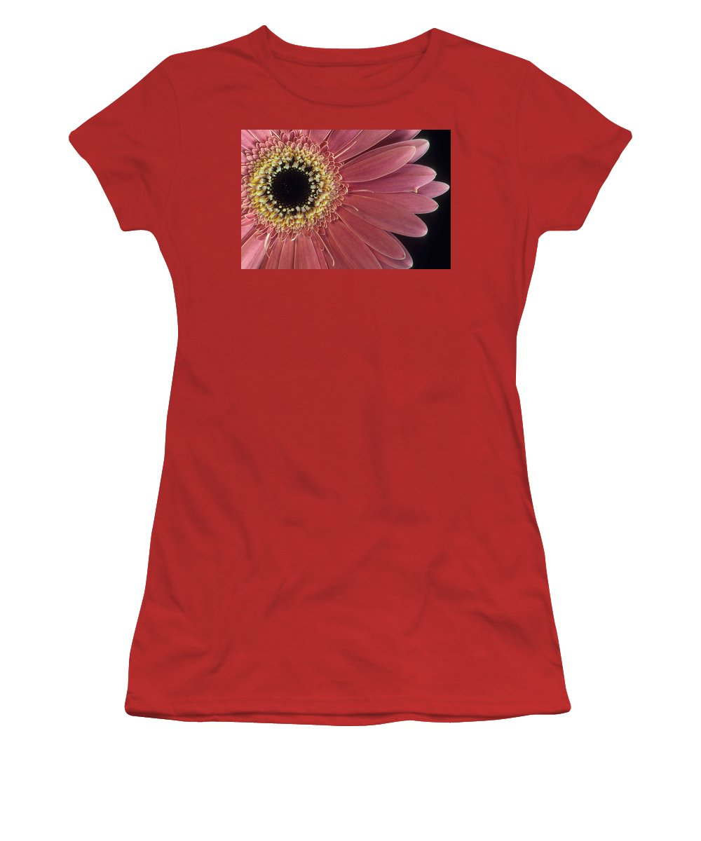 Salmon Gerber Daisy Women's T-Shirt (Athletic Fit) featuring the photograph Salmon Gerber Daisy by Laurie Paci