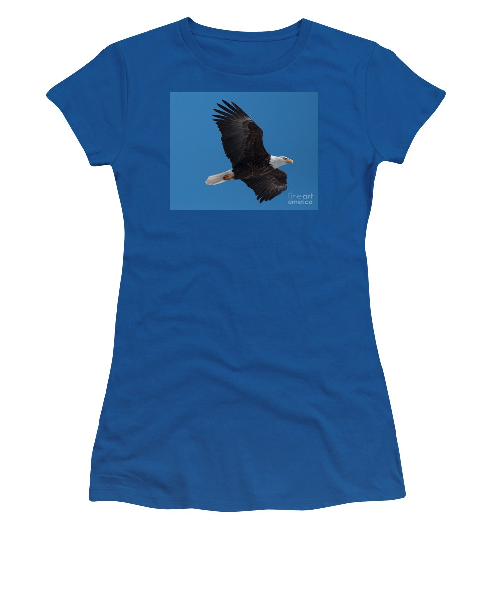 Bald Eagle Women's T-Shirt featuring the photograph Bald Eagle In Flight 6 by Ronald Grogan