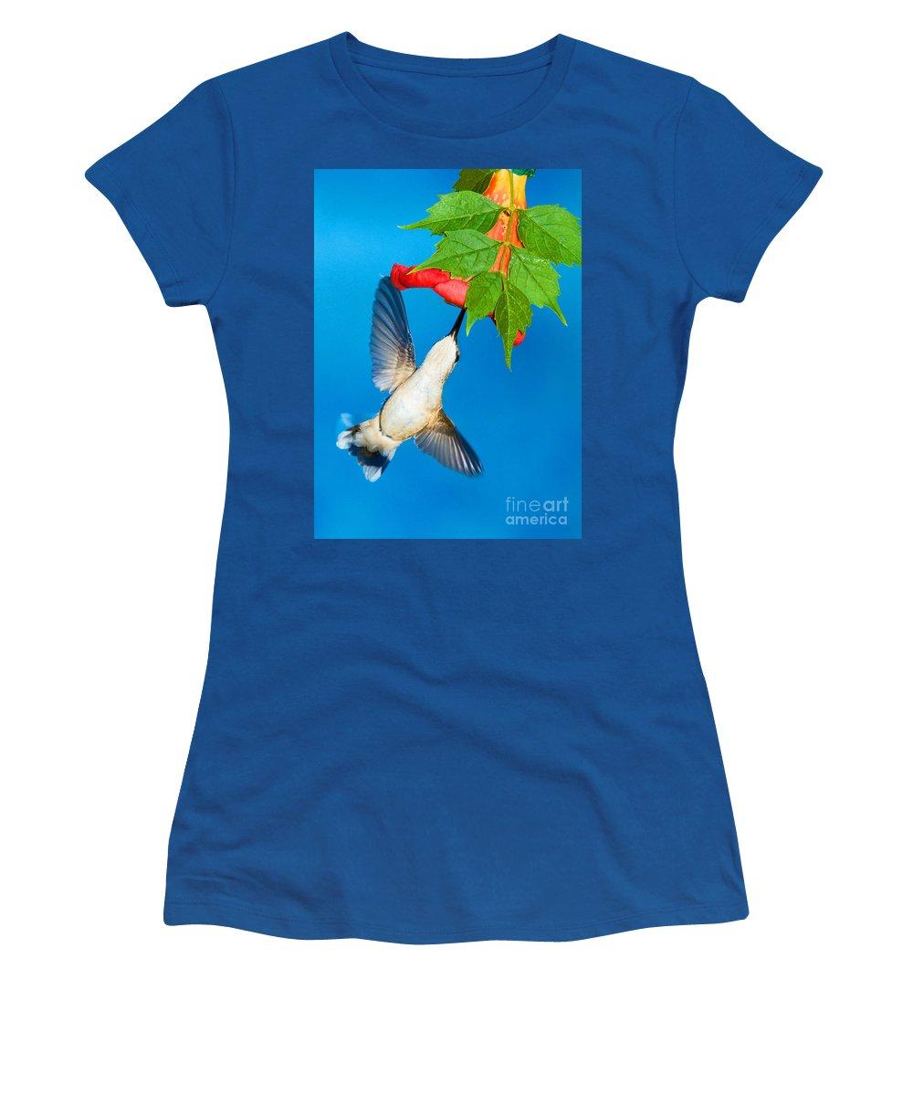Wildlife Women's T-Shirt featuring the photograph Ruby Throated Hummingbird Female by Millard H. Sharp