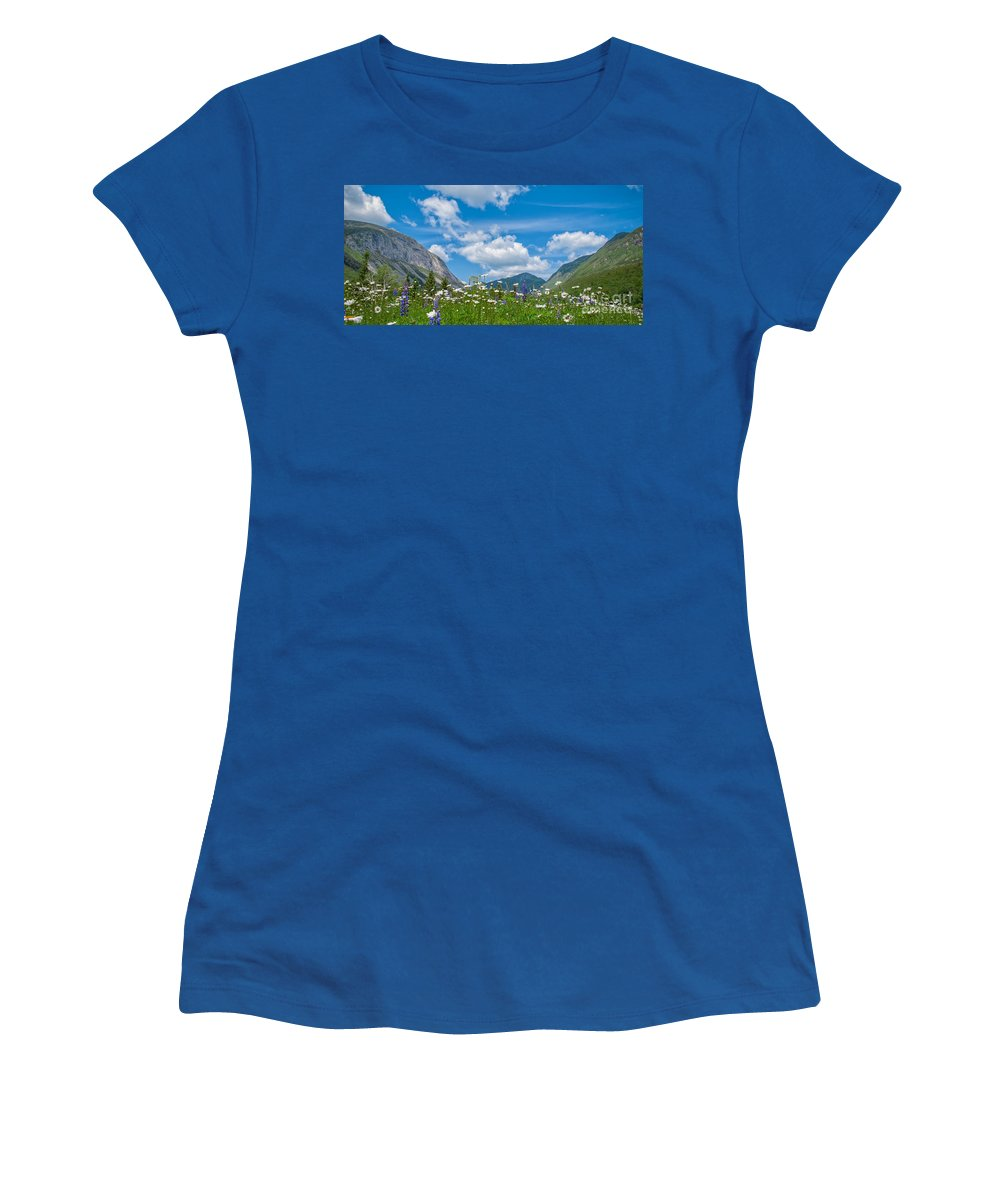 Women's T-Shirt featuring the photograph Franconia Notch - Lupine And Daiseys by Scott Thorp