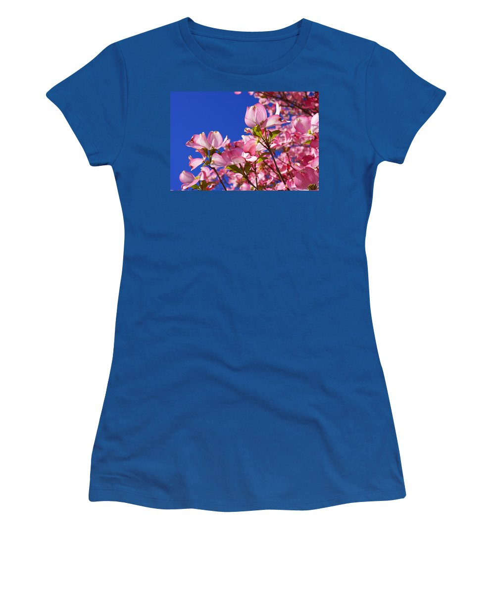 Dogwood Women's T-Shirt featuring the photograph Blue Sky Art Prints Pink Dogwood Flowers by Baslee Troutman