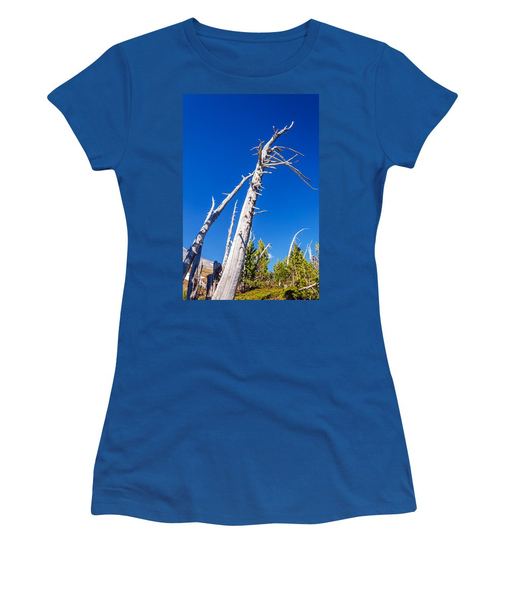 Beautiful Women's T-Shirt featuring the photograph Dead White Trees by Jess Kraft