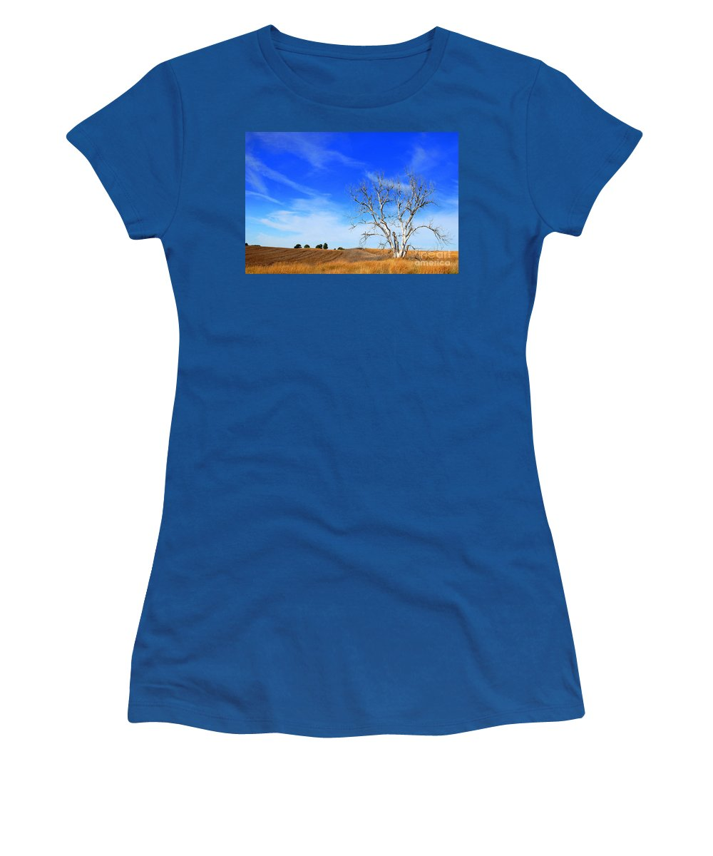 Prairie Women's T-Shirt featuring the photograph Lone Tree by Anjanette Douglas