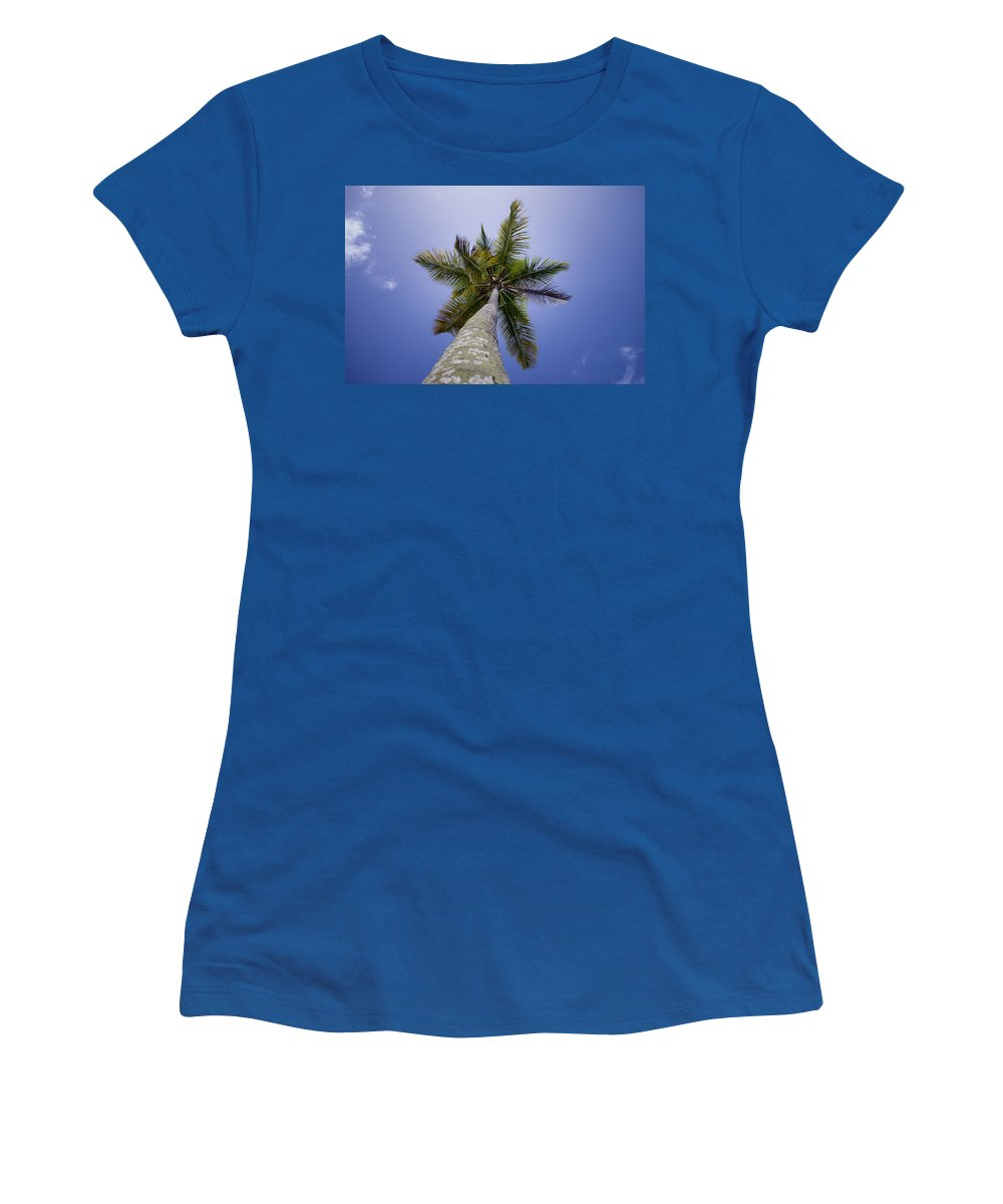 Antigua And Barbuda Women's T-Shirt featuring the photograph Looking Up by Ferry Zievinger
