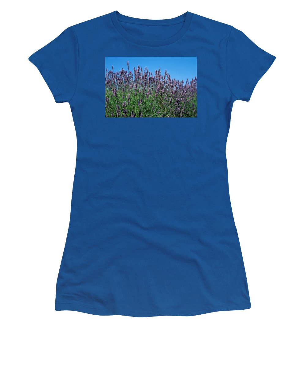 No People; Horizontal; Outdoors; Day; Close-up; Growth; Non Urban Scene; Field; Scenics; Beauty In Nature; Abundance; Fragility; Clear Sky; Washington; Organic; Lavender; Usa; Blossom; Blue; Purple Women's T-Shirt (Athletic Fit) featuring the photograph Organic Lavender by Anonymous