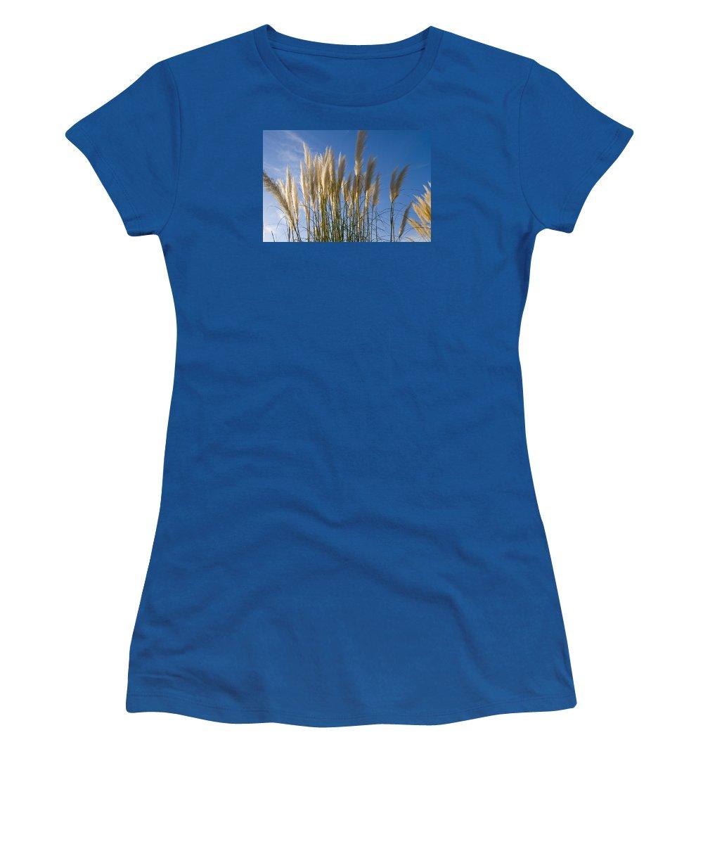 Pampas Grass Women's T-Shirt featuring the photograph Pampas Grass by Maura Satchell