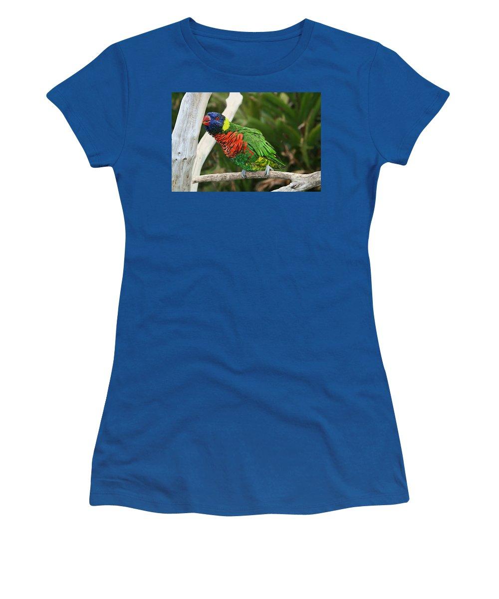 Pretty Bird Women's T-Shirt (Athletic Fit) featuring the photograph Pretty Bird by Ellen Henneke