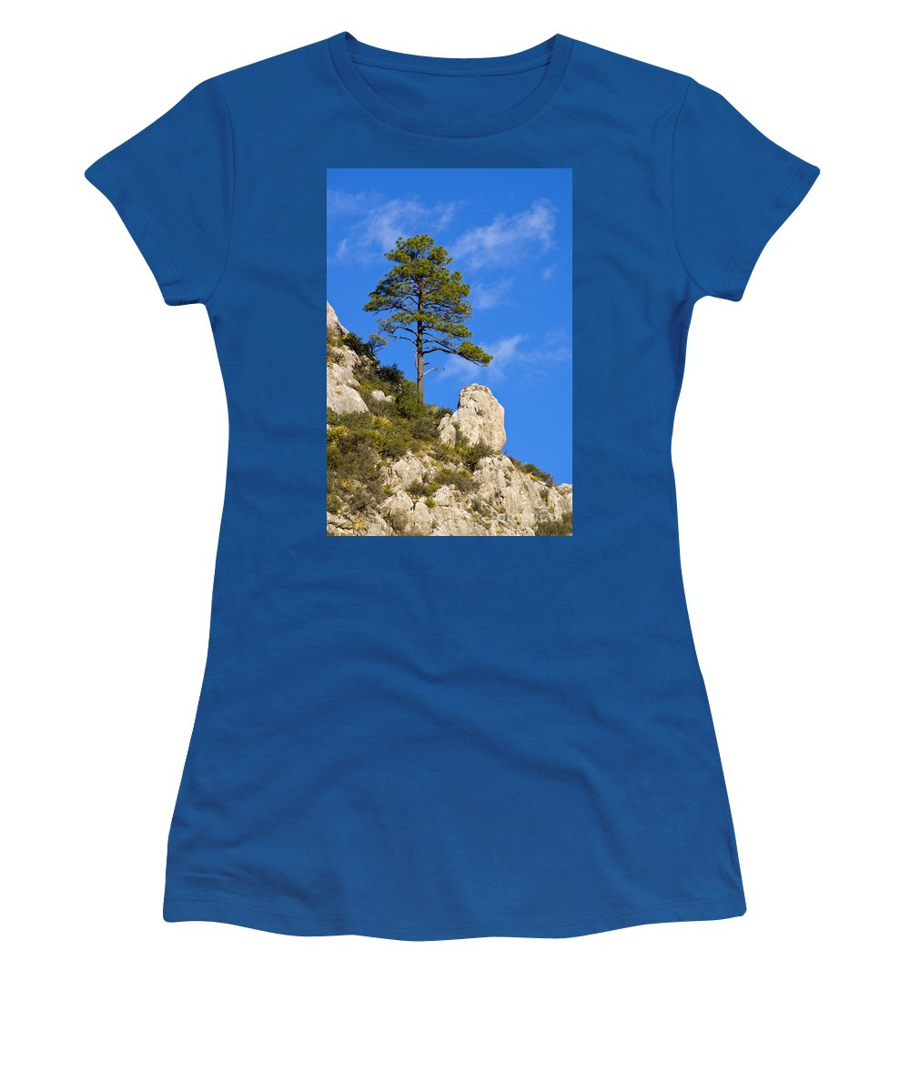 Guadalupe Mountains National Park Texas Guadalupe Peak Trail Trails Mountain Rock Rocks Landscape Landscapes Tree Trees Women's T-Shirt featuring the photograph Stand Alone by Bob Phillips