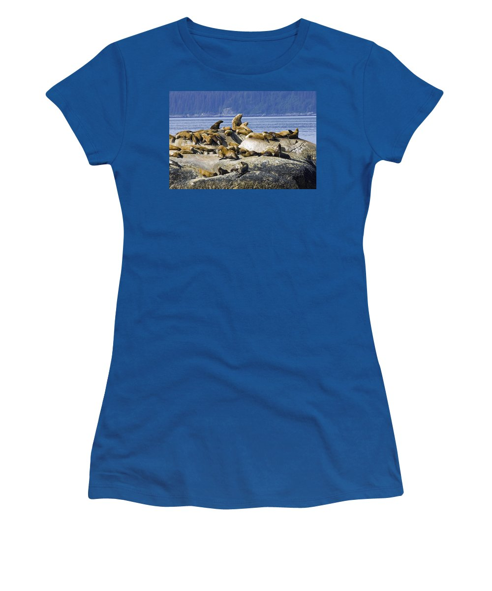 Group Women's T-Shirt featuring the photograph Steller Sea Lions On Haulout South by Don Pitcher