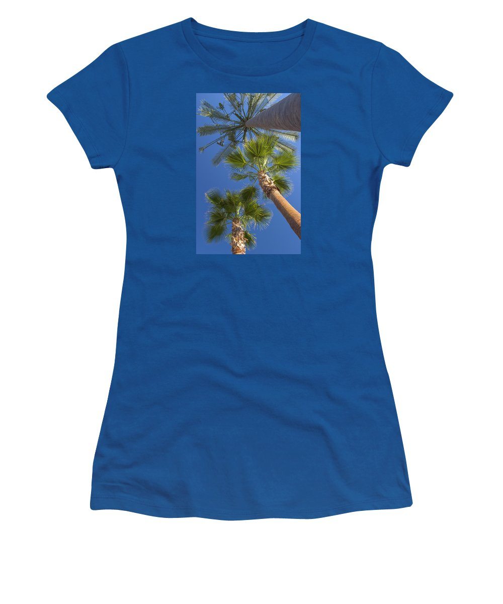 Palm Trees Women's T-Shirt featuring the photograph Which One Doesnt Belong 1 by Scott Campbell