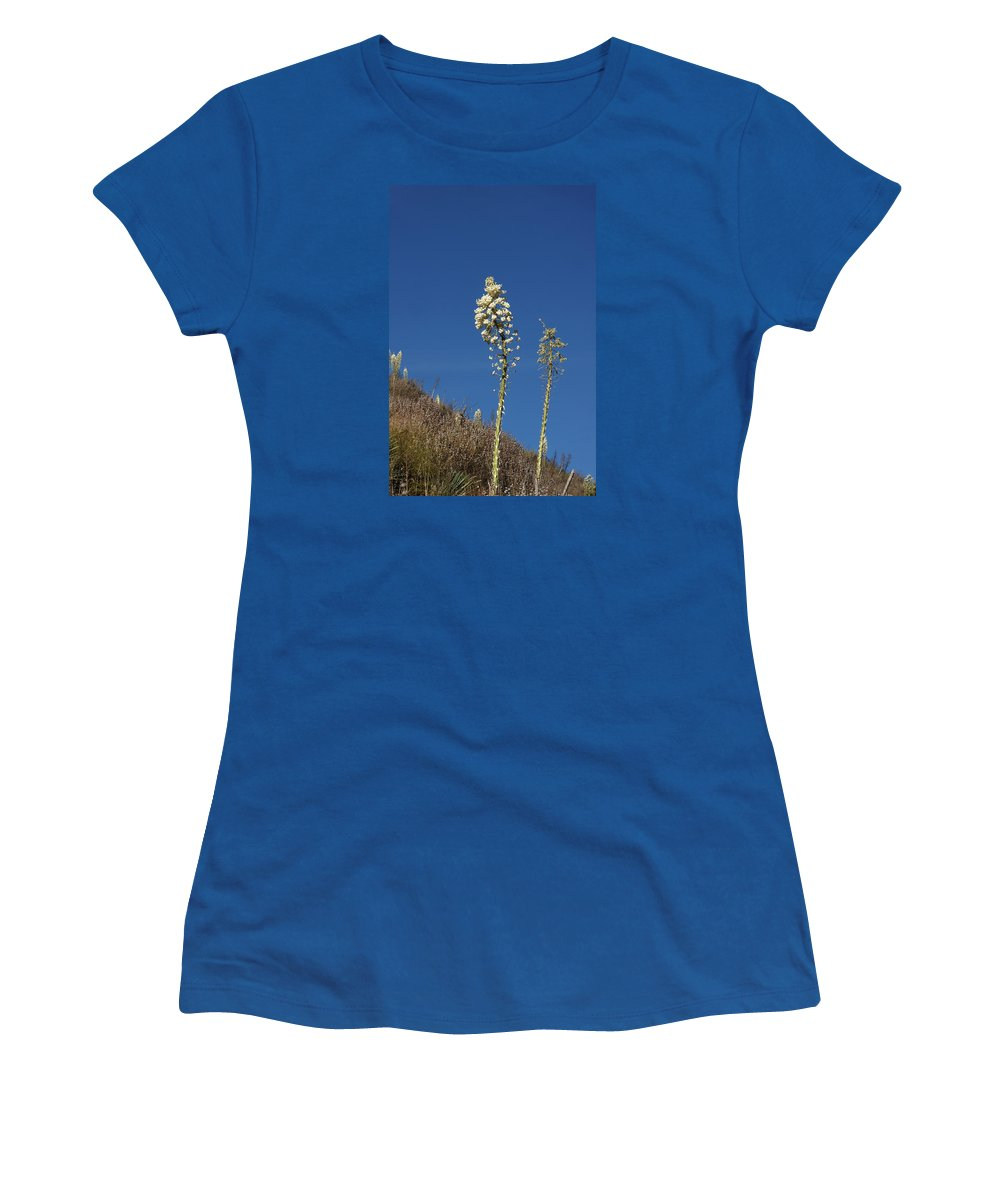 Yucca Women's T-Shirt (Athletic Fit) featuring the photograph Yucca by Art Block Collections