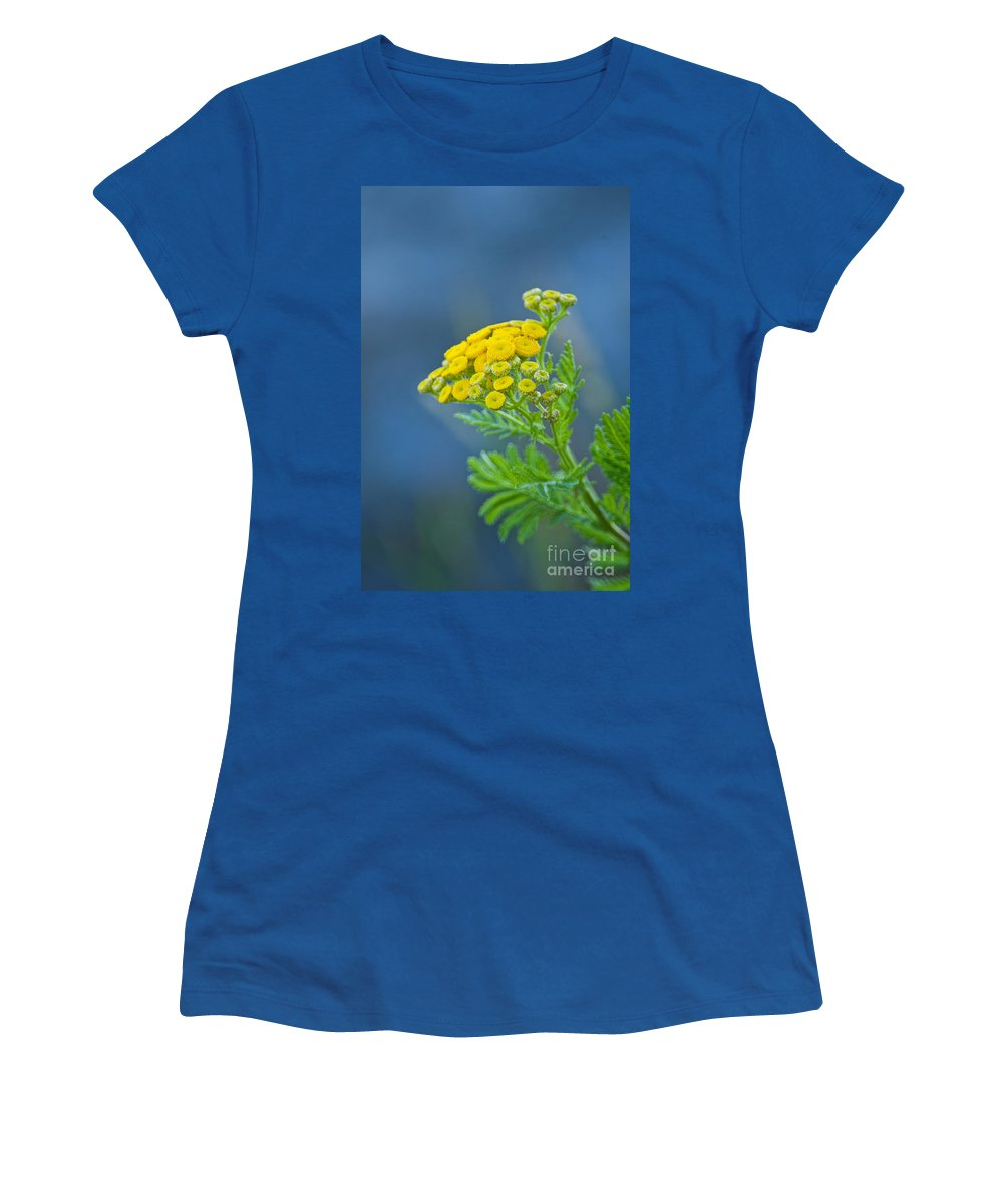 Abstract Women's T-Shirt featuring the photograph Nature's Abstract 6 by Michael Cummings
