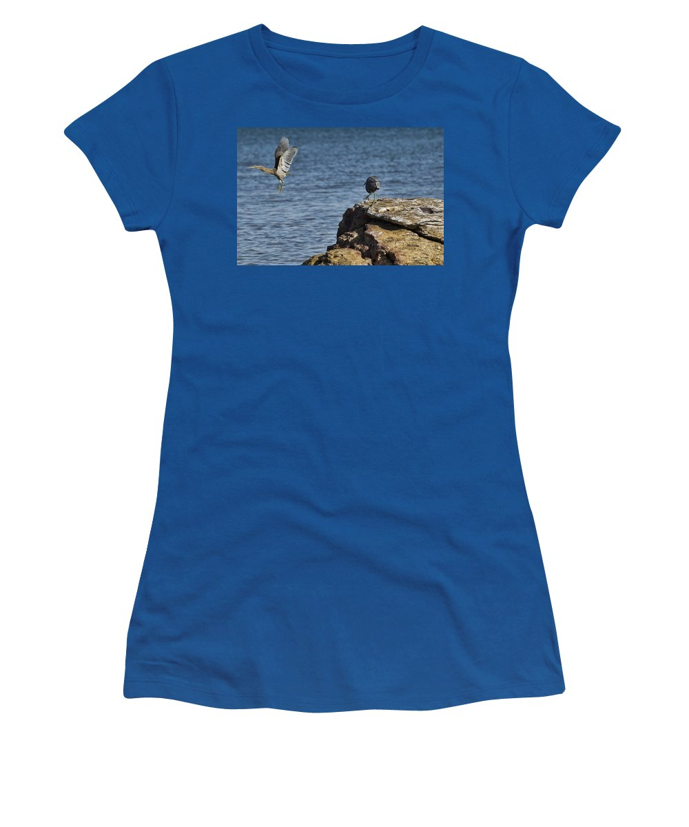Dark Reef Egret Women's T-Shirt (Athletic Fit) featuring the photograph The Winner Takes It All by Douglas Barnard