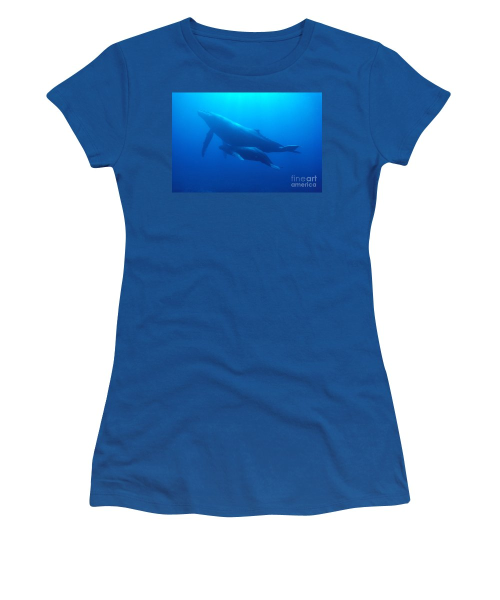 Animal Art Women's T-Shirt featuring the photograph Humpback Mother And Calf by Ed Robinson - Printscapes