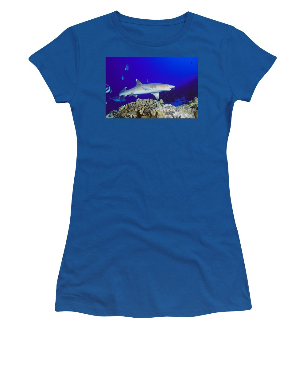 Blue Women's T-Shirt featuring the photograph Whitetip Reef Shark by Dave Fleetham - Printscapes
