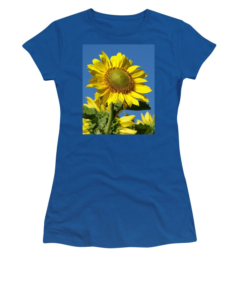 Flowers Women's T-Shirt featuring the photograph Blue Sky Sunflower Day by Ben Upham III