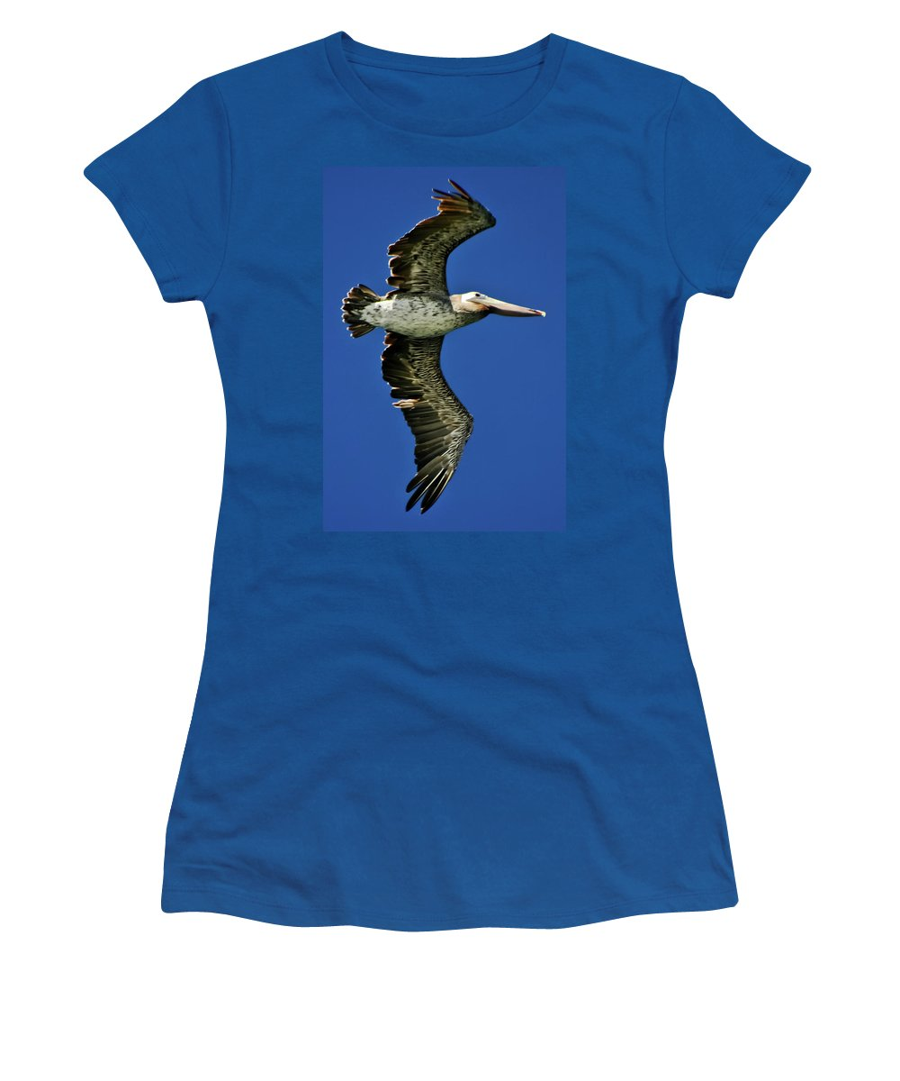 Brown Pelican Women's T-Shirt featuring the photograph Brown Pelican by Albert Seger