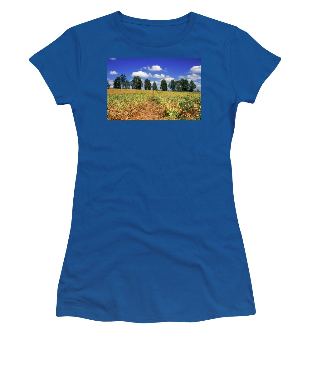 Impressionistic Women's T-Shirt featuring the photograph Fields Of Chopped Flowers At Nir Banim by Dubi Roman