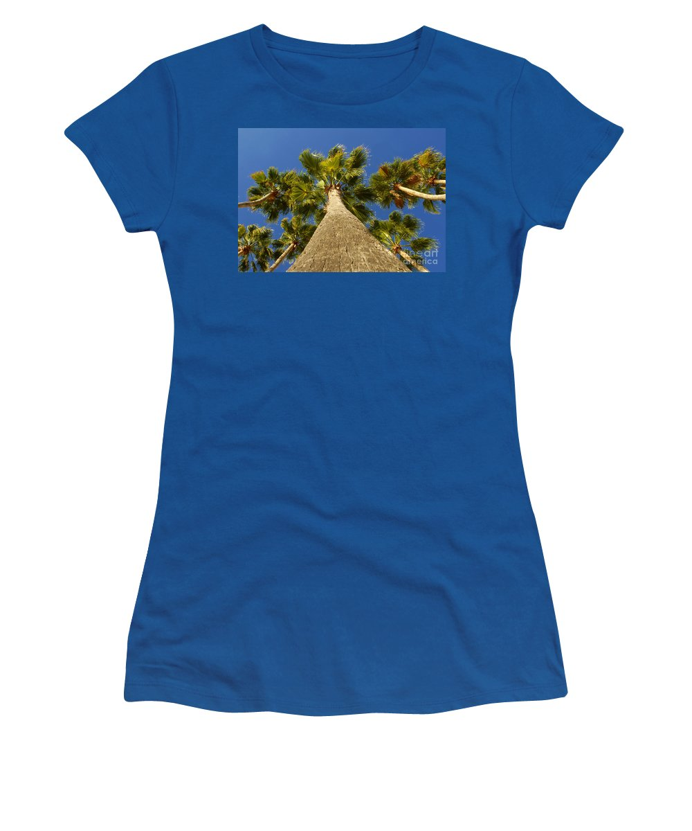 Florida. Palm Trees. Tropical Women's T-Shirt featuring the photograph Florida Palms by David Lee Thompson
