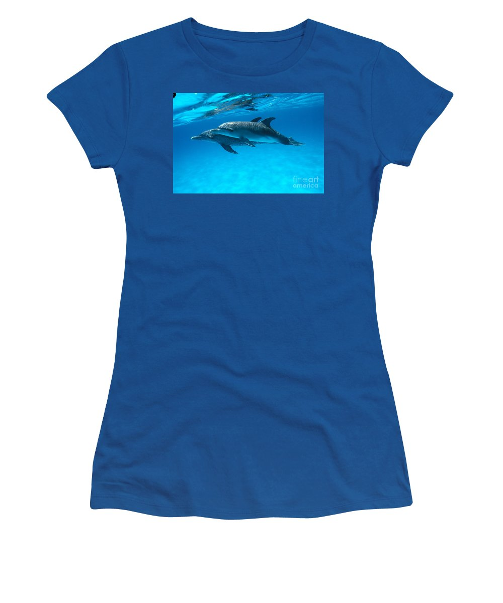 Animal Art Women's T-Shirt (Athletic Fit) featuring the photograph Pair Of Spotted Dolphins by Ed Robinson - Printscapes