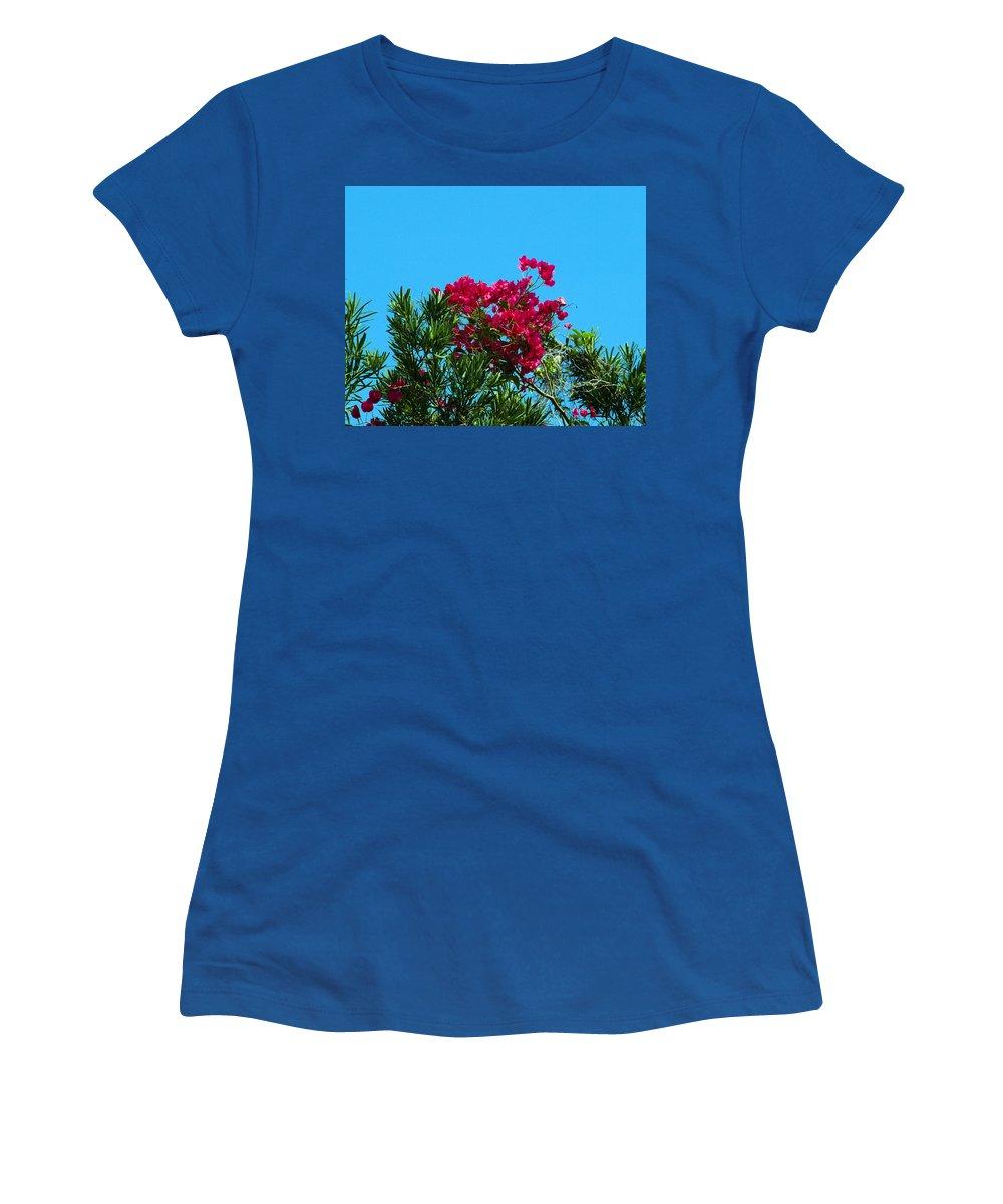 Red; Bougainvillea; Glabra; Juniperus; Vitginiana; Silicicola; Coastal; Cedar; Tree; Vine; Grow; Gro Women's T-Shirt featuring the photograph Red Bougainvillea Glabra Vine by Allan Hughes