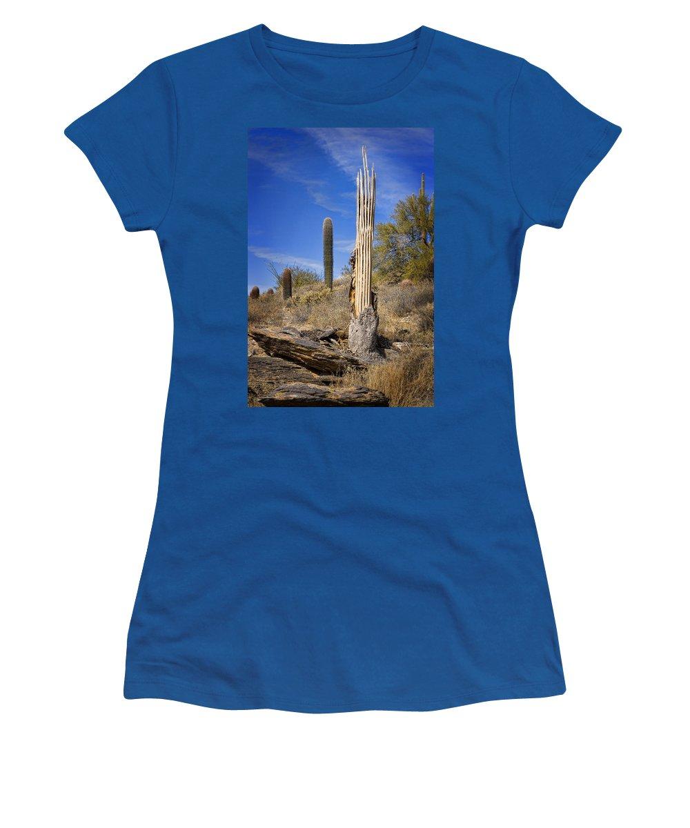 Saguaro Women's T-Shirt featuring the photograph Saguaro Cactus Skeleton by Kelley King