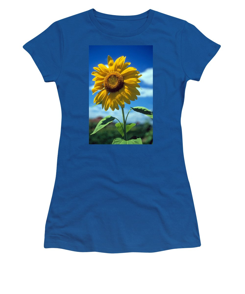 Sussex County Women's T-Shirt (Athletic Fit) featuring the photograph Sussex County Sunflower by Laurie Paci