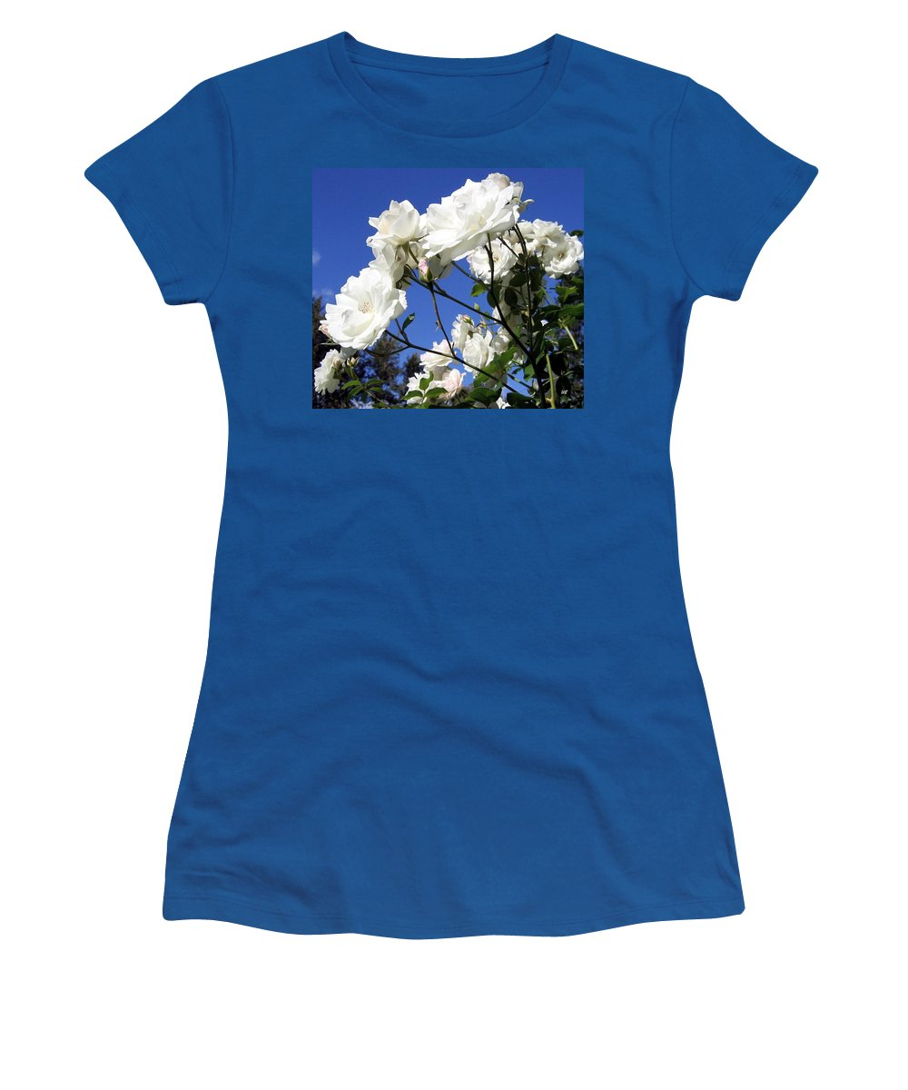 Roses Women's T-Shirt featuring the photograph The Iceberg Rose by Will Borden