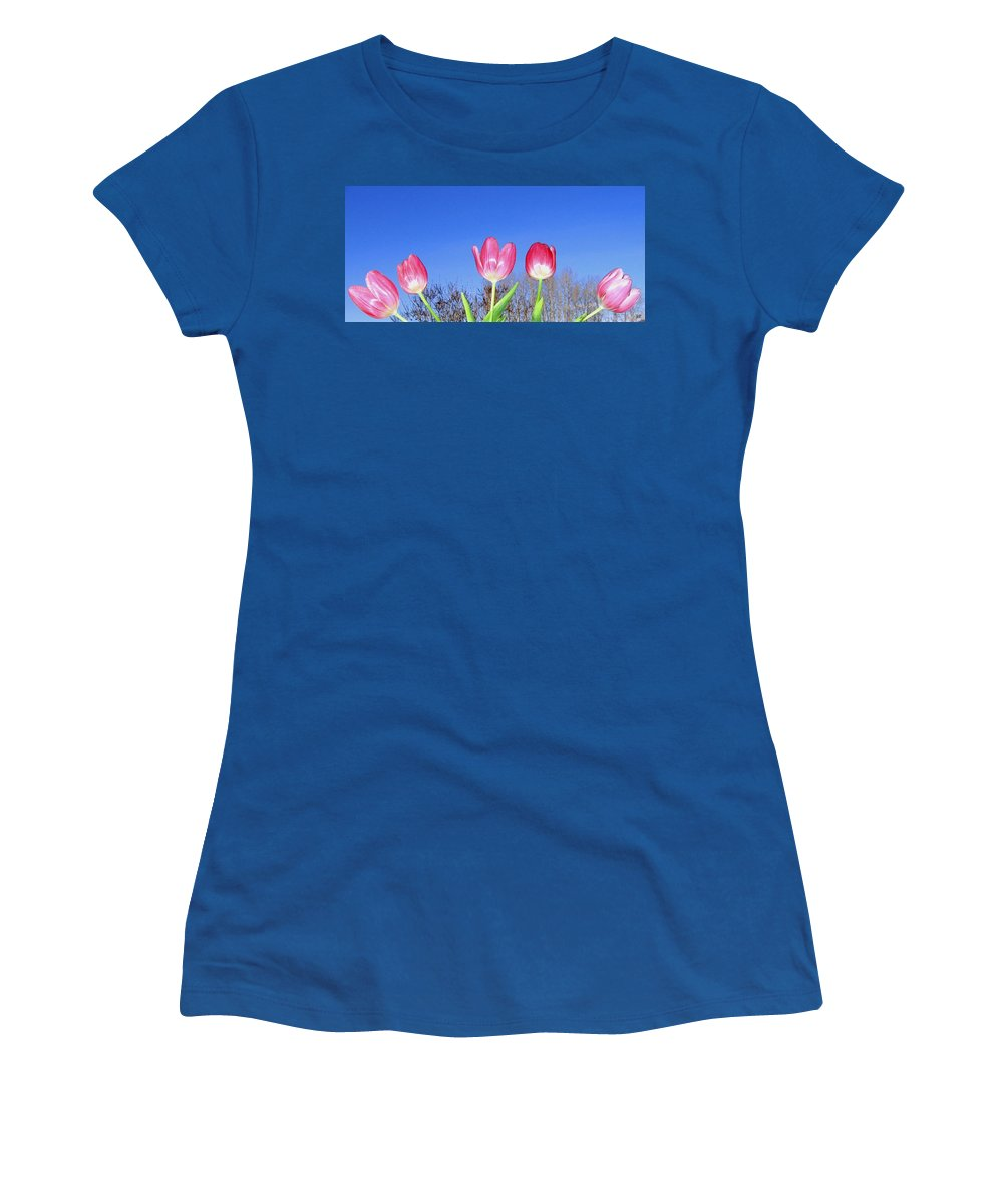 Tulips Women's T-Shirt (Athletic Fit) featuring the photograph Tulip Panorama by Will Borden