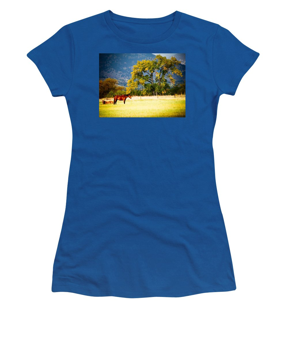 Animal Women's T-Shirt (Athletic Fit) featuring the photograph Two Horses by Marilyn Hunt
