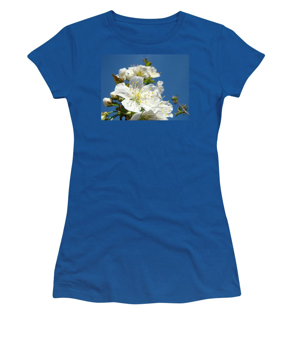 Blossom Women's T-Shirt featuring the photograph White Blossoms Art Prints Spring Tree Blossoms Canvas Baslee Troutman by Baslee Troutman