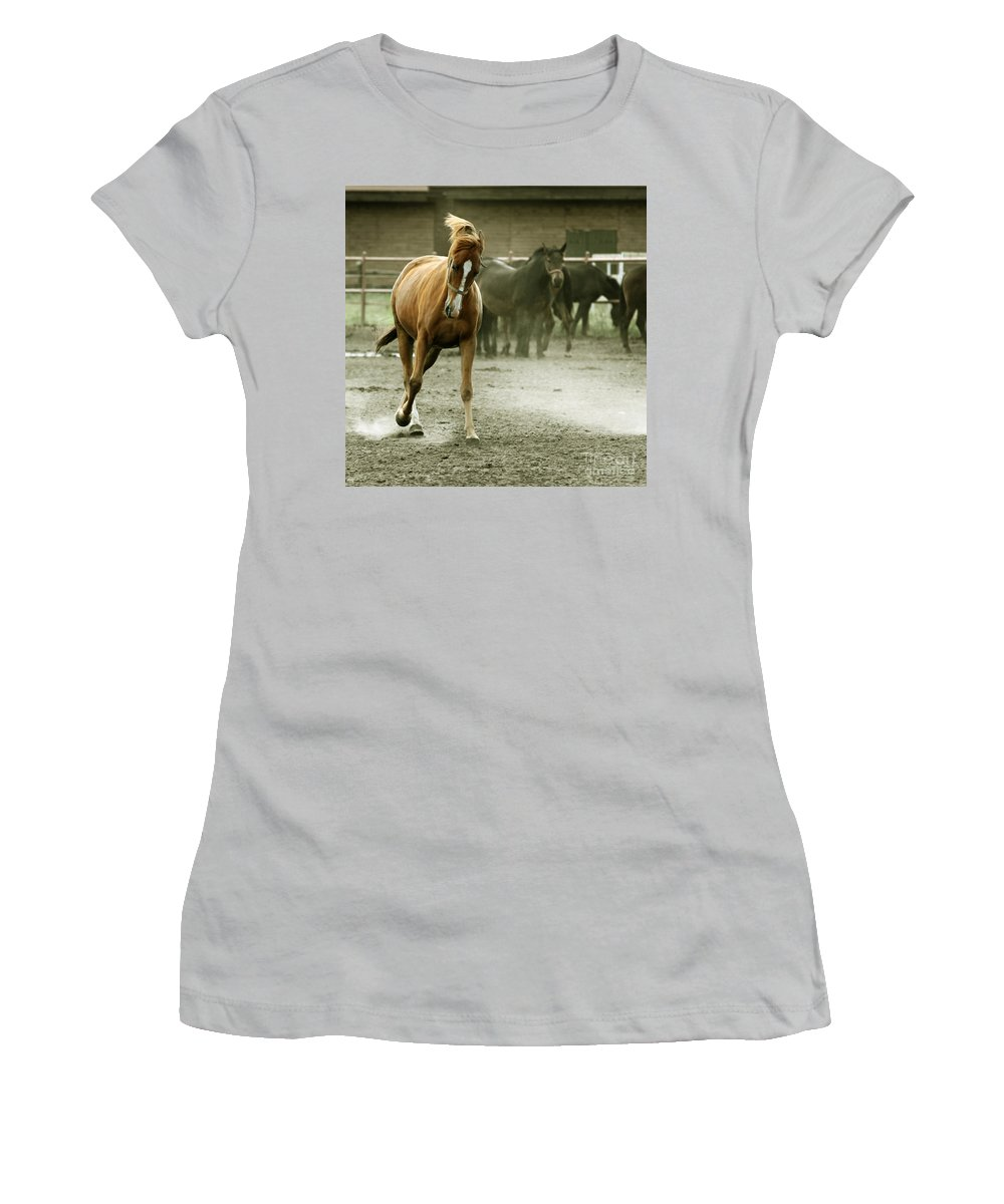 Paddock Women's T-Shirt (Athletic Fit) featuring the photograph Dusty Paddock by Angel Ciesniarska