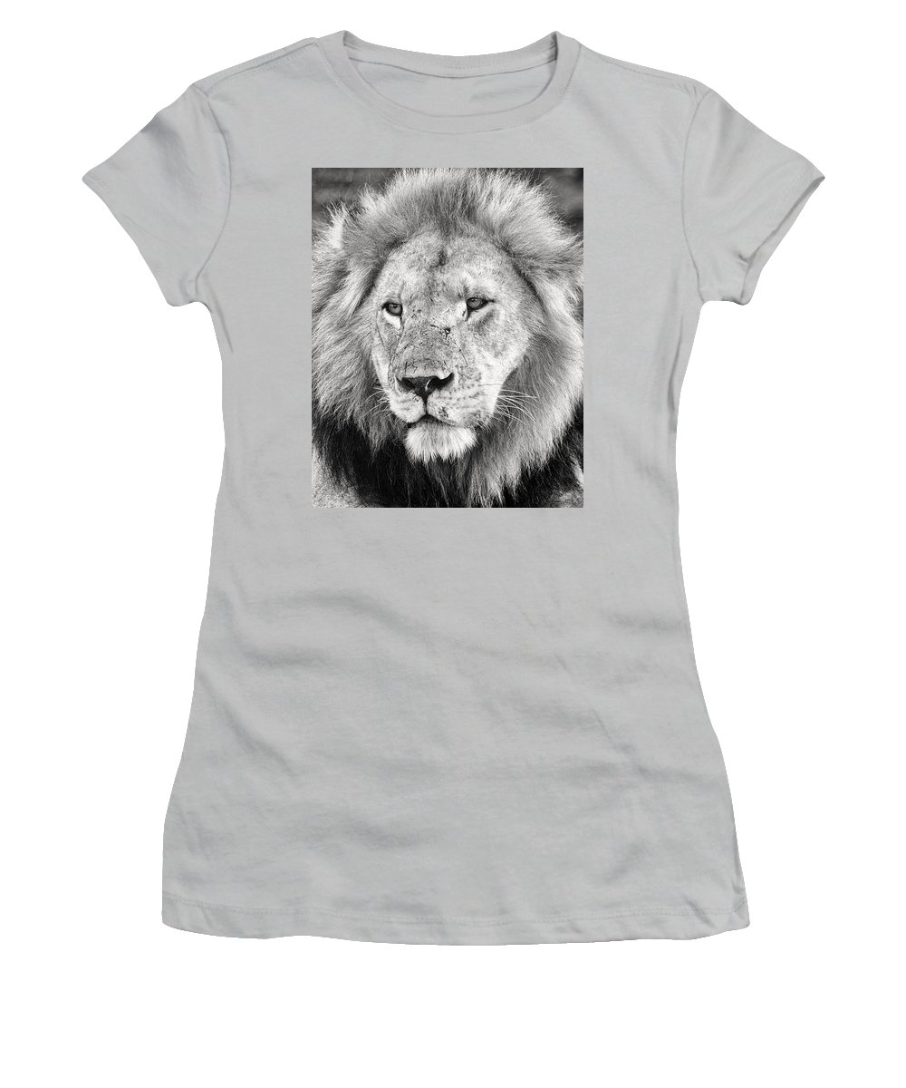 3scape Photos Women's T-Shirt (Athletic Fit) featuring the photograph Lion King by Adam Romanowicz